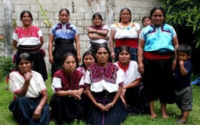 Culturas Vivas de Chiapas