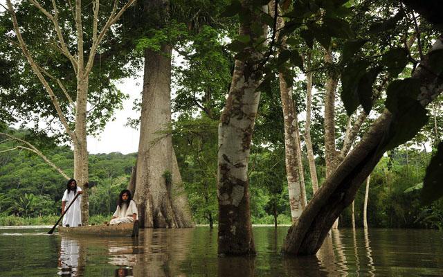 La selva Lacandona podría desaparecer en 10 años por la corrupción: indígenas