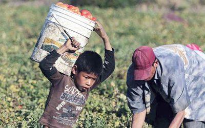 Chiapas, de los estados con mayor trabajo infantil: CNDH